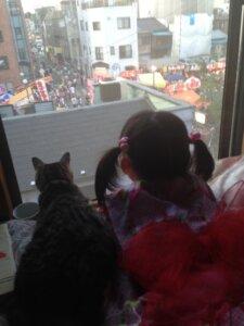 ネコと一緒に眺める